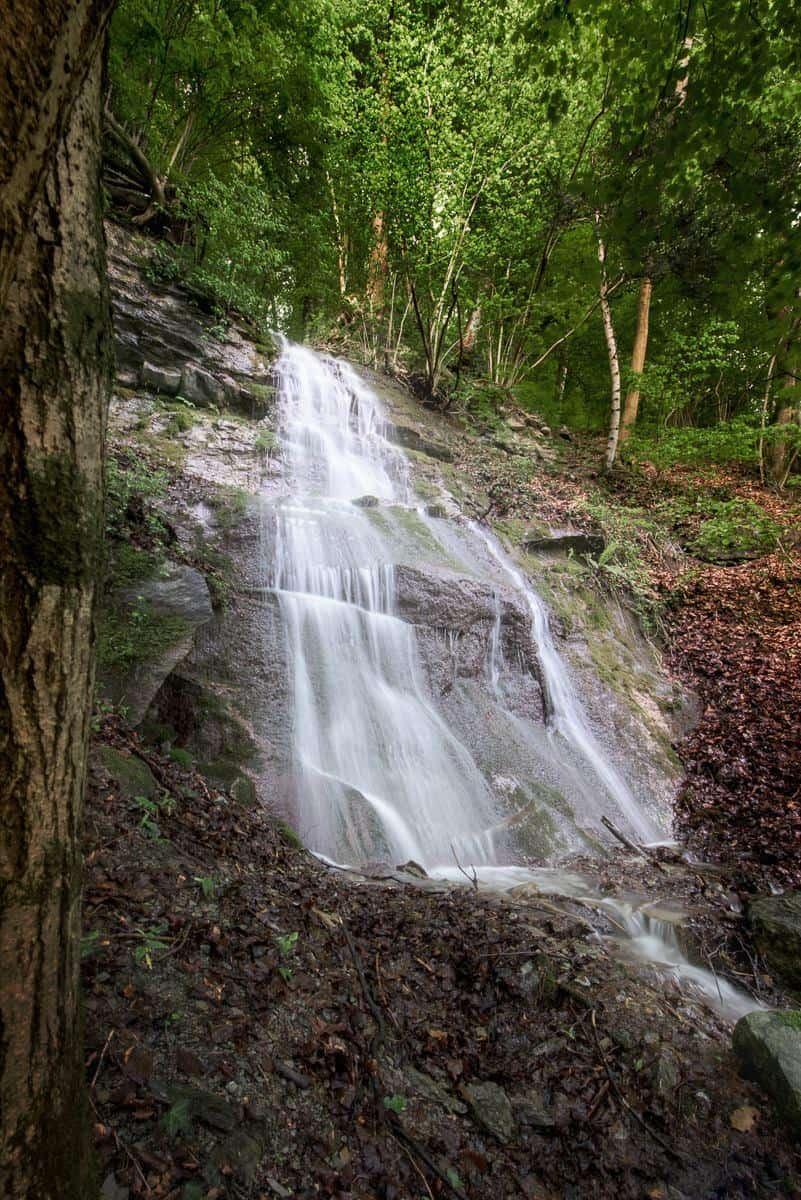 Fotograf Markus Lehner, Zürichsee, Naturreservat Wasserfall